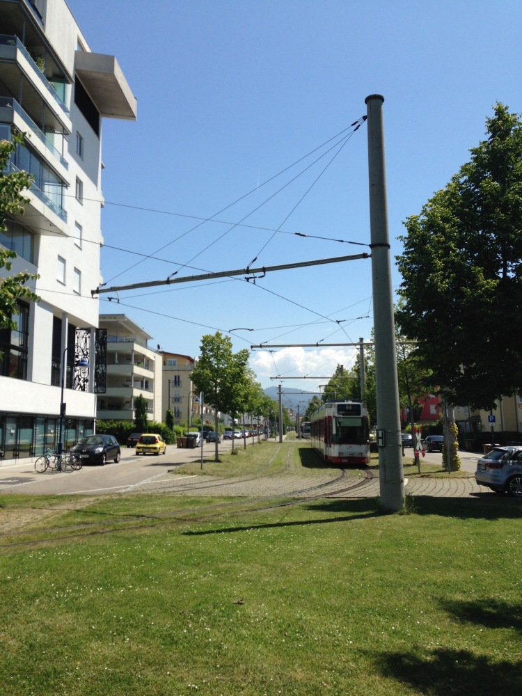 Green tram tracks